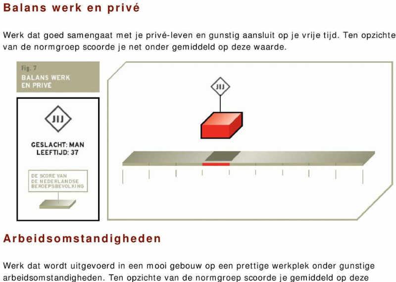 Nederlandse werkwaarden test